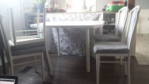 Kitchen table and 4 chairs $30