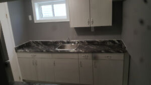 Recently Renovated Bachelor With Separate Entrance and Laundry