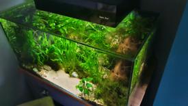 AquaVis 130L Fish Tank and Cabinet