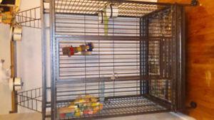 Énorme cage perroquet avec parc sur le dessus pour ara ou autres
