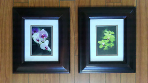 Flower pictures w frames