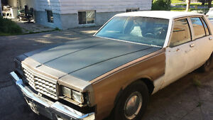 1986 White Caprice for sale