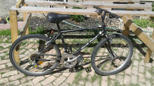 Old style Bikes for a Nostalgicley Cheap price.