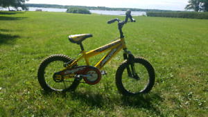 Kids Bicycle supercycle xr16