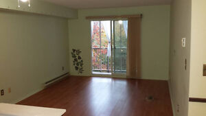 Beautiful Condo for rent in Kingston's west end Kingston Kingston Area image 2