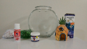 EVERYTHING You Need For A Betta Fish! $30