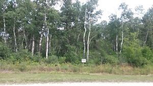 Open to Offers Titled Lake Manitoba Narrows Lake View Lot