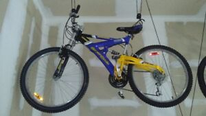 Two BMX Mountain Bikes