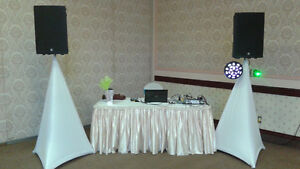 PLUG-IN and PLAY - BE YOUR OWN DJ - $250.00 Kitchener / Waterloo Kitchener Area image 1