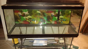 Fish Aquarium with Stand and Accessories
