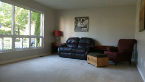 Room in big house available for clean and quiet housemate