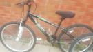 2 Adult bikes £35 each