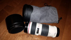 Canon EF 70-200mm f/4L USM Telephoto Zoom Lens for SLR Camera