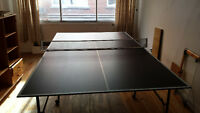 Tennis table and net PING PONG.