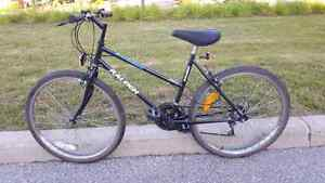 For sale Raleigh Summit mountain bike !!!