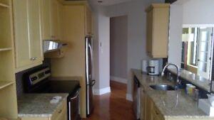 Armoires de cuisine et comptoir de granit