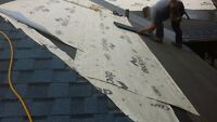 Licence flat or slope roofing contractor
