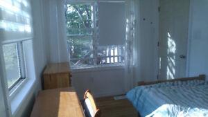 Sunny room rent