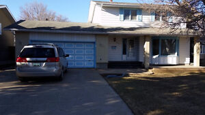 AVAILABLE BASEMENT SUITE ready to move in Nov!
