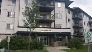 ** REDUCED RENT ** Spacious 2 Bedroom Condo  (West End)