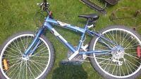 Great bike never used