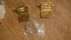 22 Brass Cabinet Hinges Hardware