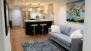 Spacious newly renovated 3 bedroom apartment Junction High Park