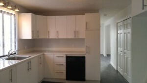 Beautiful 2-BR Condo in Old Longueuil Close to Subway Station