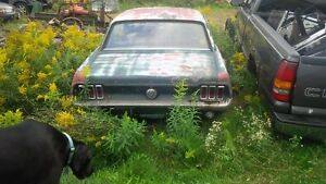 ON HOLD - 1967 Ford Mustang Coupe Parts car with ownership