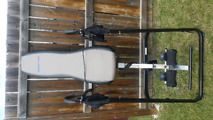 Heated Ironman inversion table