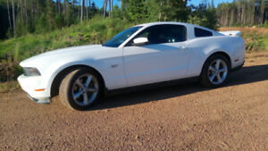 2010 Ford Mustang GT Coupe $11227.36 FIRM!