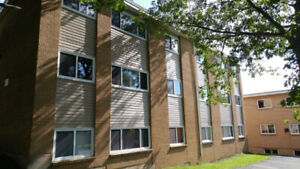 Clean 1 BR apartment available for rent in Dartmouth