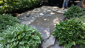 New Pond Install & Pond Re-Builds / FaceLift London Ontario image 2