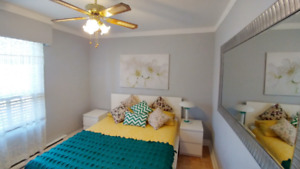 Apartment 4 1/2 for rent  Montreal All inclusive! Furnished!