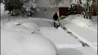 Snow Removal Service - Snow Storm Special !!!!