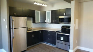 2 Bedroom Apts available September/October 1 - close to downtown