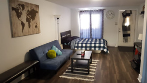 Luxurious Studio! Newly Renovated and fully Furnished