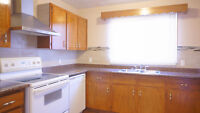 Forestlawn Clean 5 bedroom renovated clean