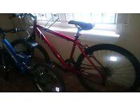 """Apollo Feud Mountain Bike 20""""Frame"""