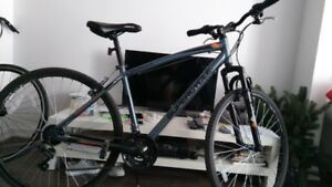 Two bikes, half price, 2 months old - $150  &  $300