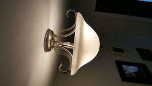 brushed nickle light fixture #2