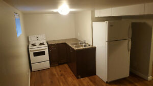Beautiful 2 bedroom, steps away from the Grand River Cambridge Kitchener Area image 3