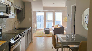 Brand New Luxurious Studio in the core of Downtown Ottawa
