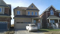 Brand new 4 bedroom, house for rent near UOIT in North Oshawa