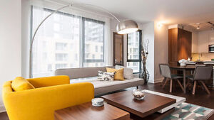 Furnished Luxury brand new downtown condo for Rent