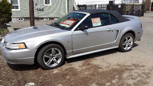 2000 Ford Mustang Cabriolet .. 2 Mustang disponible gris, rouge