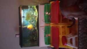 55 gallon fish tank with red devil fish