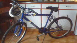 Mens 10 speed bike