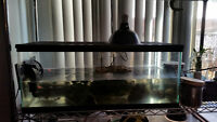 Zilla Turtle Tank Kit with Mississippi Map Turtle