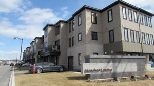 Brand New Town House in Kanata south
